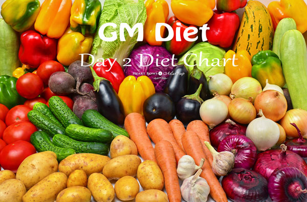 GM Diet Plan For Day 2 Experience & Tips