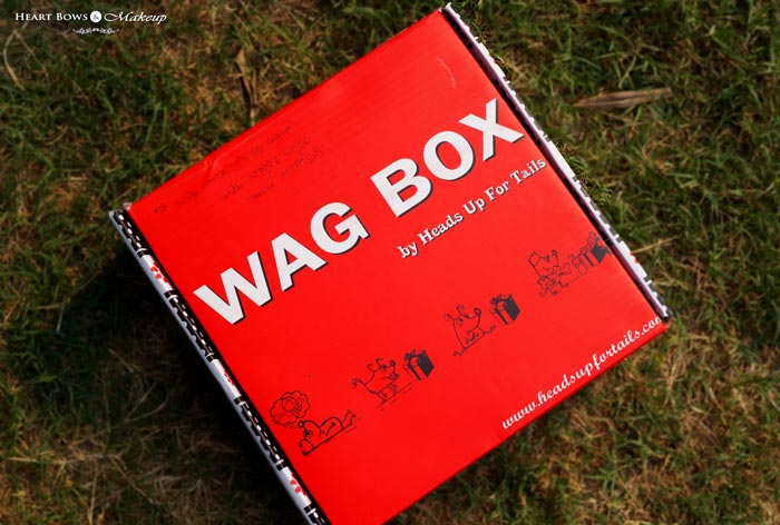 Heads Up For Tails Wag Box Review Price Buy Online