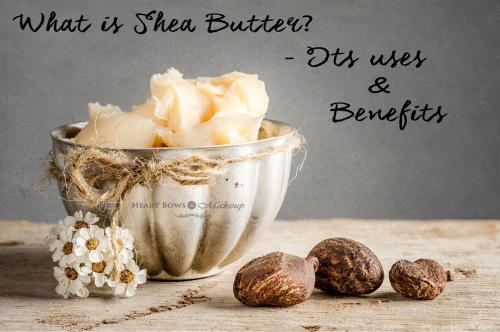 What is Shea Butter- Its Uses, Benefits & Best Shea Butter Products!