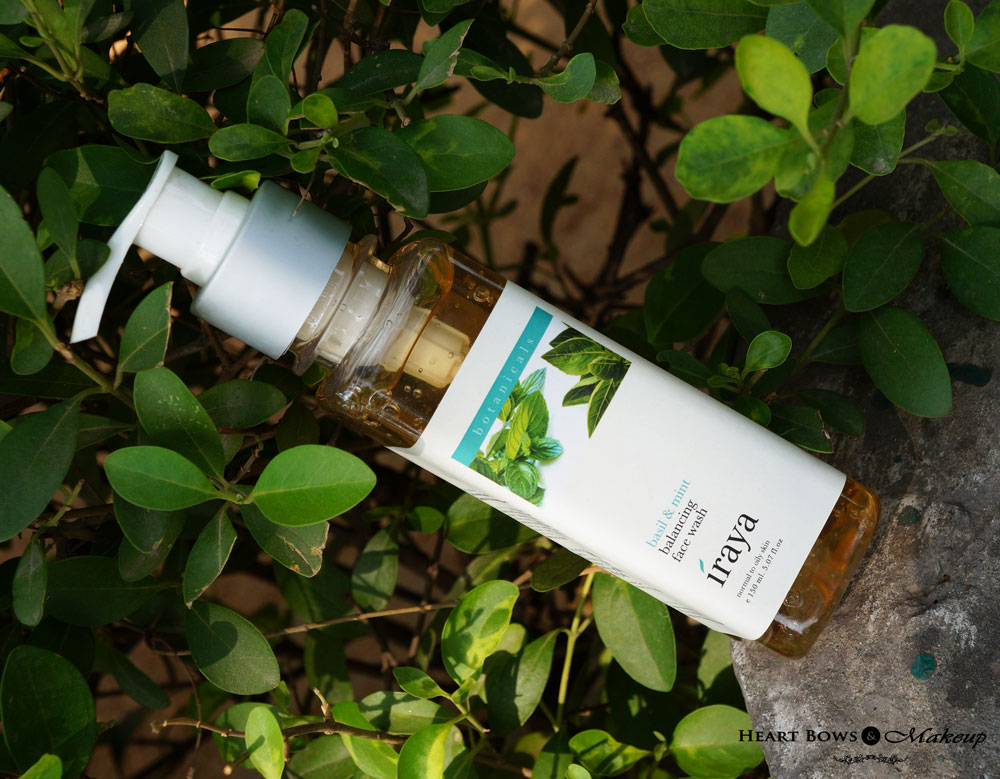 Iraya Basil & Mint Balancing Face Wash Review- Best Face Wash For Oily Skin